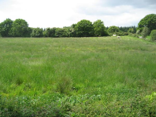 Boleynagough Site, Whitegate